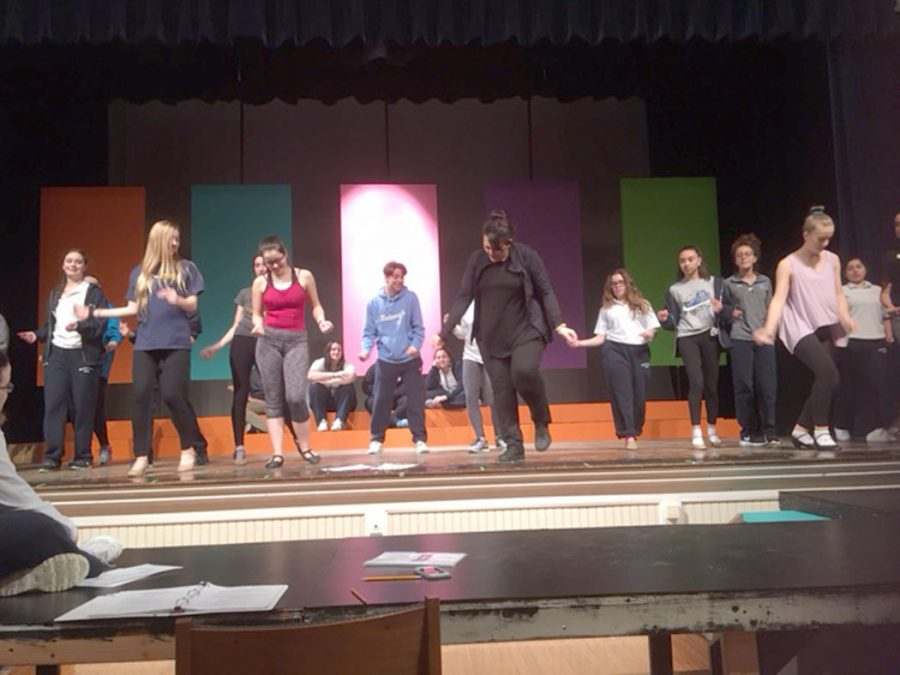 Bye Bye Birdie Comes to the Mount