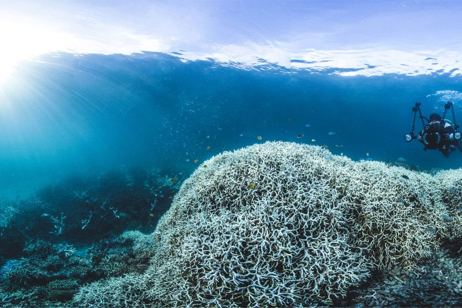 The+Danger+of+Climate+Change+and+Its+Impact+on+Our+Oceans