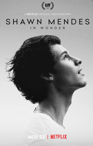 Shawn Mendes in Wonder: Documentary Review